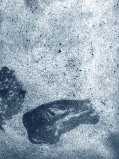 Wasserkocher I – (Appetite for the Magnificent) 2018, Photogravur auf Büttenpapier, 122 x 91 cm