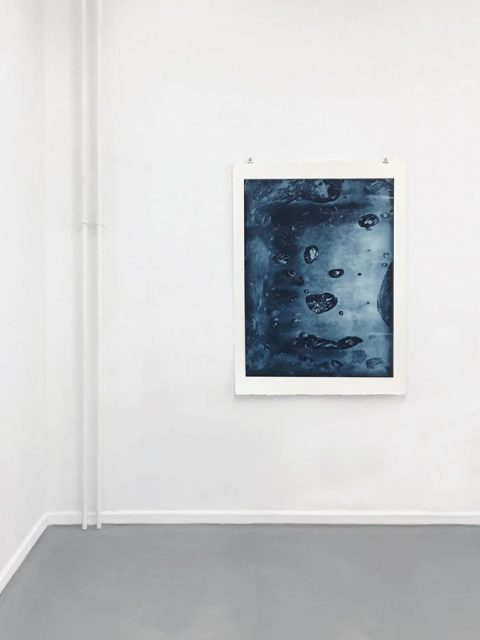 Aurel Dahlgrün - Boiling water (appetite for the magnificent) photogravure on handmade paper, 122 x 91 cm, 2018